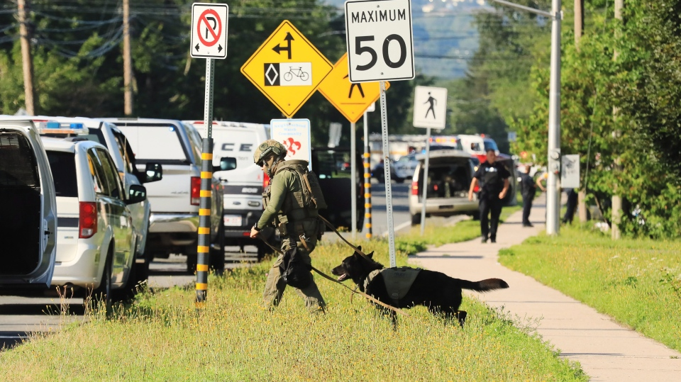 Police officers survey the area of a shooting in Fredericton on Friday, Aug. 10, 2018. (THE CANADIAN PRESS/Keith Minchin)