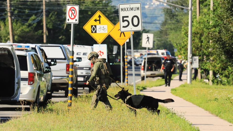 Police officers survey the area of a shooting in Fredericton, N.B. on Friday, August 10, 2018. (THE CANADIAN PRESS/Keith Minchin)