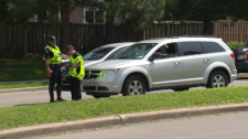 Police investigating the scene of a pedestrian hit