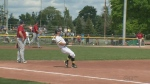 Kitchener Panthers sweep Brantford Red Sox
