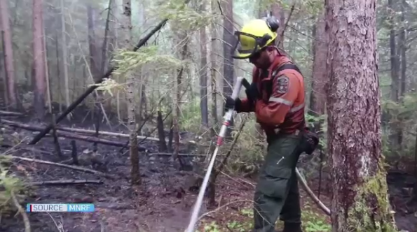 MNRF fire fighter working with hose in the bush