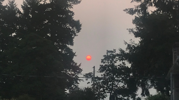 Wildfire smoke brings regional health warning — QUALITY ALERT