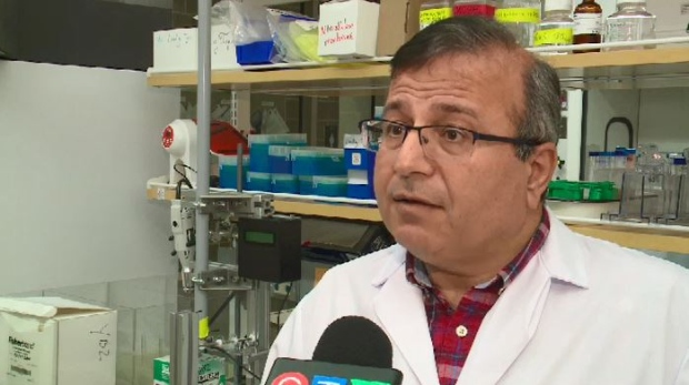 A research team led by Changiz Taghibiglou has been working on a blood test to detect concussions. (Moses Waldu CTV)