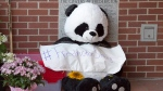A stuffed bear forms part of a makeshift tribute outside the police station in Fredericton on Saturday, Aug. 11, 2018. (THE CANADIAN PRESS/Andrew Vaughan)