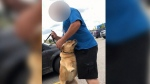 Confrontation after couple lets dog out of hot car