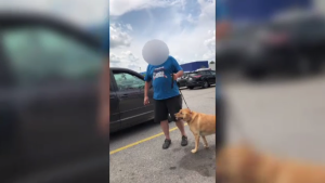 Two people claim they found a dog in a hot car and freed it, resulting in a confrontation with the owner.
