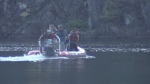 Divers recover drowned swimmer's body