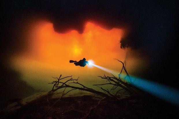 Underwater Photos of 2018