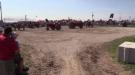 International Plowing Match