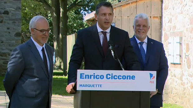 liberal party facing backlash as enrico ciccone named as candidate