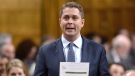 Conservative leader Andrew Scheer rises during Question Period in the House of Commons on Parliament Hill in Ottawa on June 20, 2018. THE CANADIAN PRESS/Justin Tang