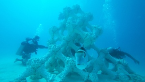 The world's largest 3D-printed artificial reef in the Maldives (Reef Design Lab)