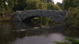 A man exposed himself to a woman near the rock bridge in Beacon Hill Park on Aug. 9. August 17, 2018. (CTV Vancouver Island)
