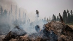 More evacuation alerts issued in B.C.