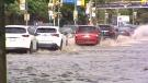 rain Remembrance Drive
