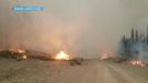 Wildfire near Kimberley, British Columbia