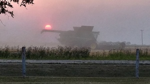 Harvest sun through dust and smoke. Photo by: Jacquie Russell.