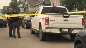 Calgary police recover stolen truck in hit and run | CTV News