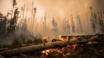 A wildfire burns on a logging road approximately 20 km southwest of Fort St. James, B.C., on Wednesday, August 15, 2018. THE CANADIAN PRESS/Darryl Dyck