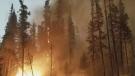 Wildfire season third worst on record