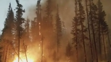 Wildfire season third worst on record