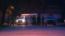 Elderly woman dead after stabbing near Toronto