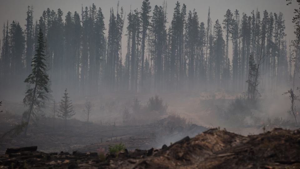 Smoke rises from an area burned by the Shovel Lake wildfire near Endako, B.C., late Thursday, August 16, 2018. THE CANADIAN PRESS/Darryl Dyck