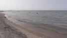 Georgian Bay as seen from Bluewater Beach. (Aug. 19, 2018)