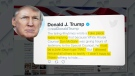 CTV National News: Trump rages on Twitter
