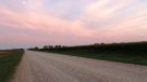 Out for an evening run in Niverville. Photo by Zoe Church.
