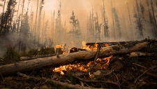 A wildfire burns on a logging road approximately 20 km southwest of Fort St. James, B.C., on Wednesday, August 15, 2018. The British Columbia government has declared a provincial state of emergency to support the response to the more than 500 wildfires burning across the province. THE CANADIAN PRESS/Darryl Dyck