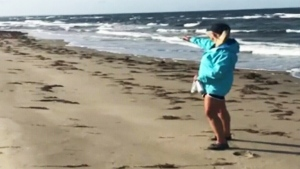 Walk on beach turns up 8 messages in a bottle