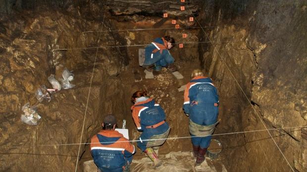 Neanderthal, Denisovan Hybrid Teen Sheds Light On Interbreeding Among Different Human Species
