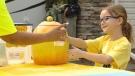 lemonade stand day