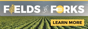 Fields To Forks button
