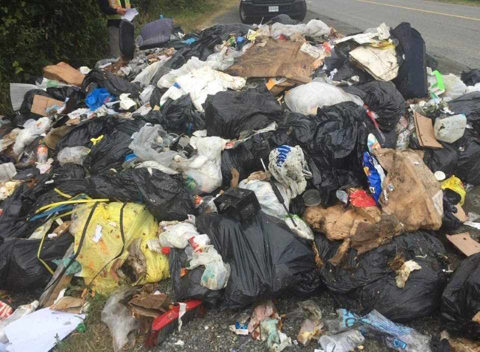 Pictures of the dump show a heap of garbage bags, some split open, with household trash scattered everywhere. Aug. 26, 2018. (City of Nanaimo)