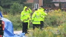 Police investigate Sturgeon Falls homicide