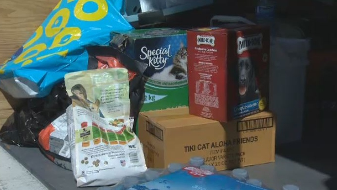 Victoria-based RainCoast Dog Rescue Society is raising money and asking for supplies to assist animals in rural communities hit hardest by wildfires. Aug. 27, 2018. (CTV Vancouver Island)