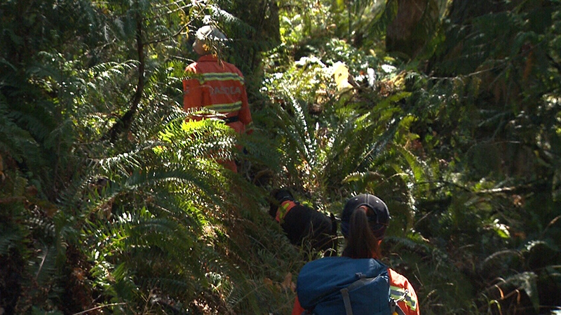 On Monday, specialized search teams with eight cadaver dogs scoured the brush of the Cowichan Valley to try to pick up Kilmer's scent. Aug. 27, 2018. (CTV Vancouver Island)