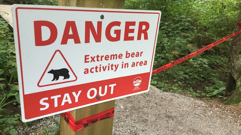 A sign warns hikers of extreme bear activity in Lynn Headwaters Regional Park. (Justin Okines)