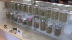 Study finds pot can help hard drug users