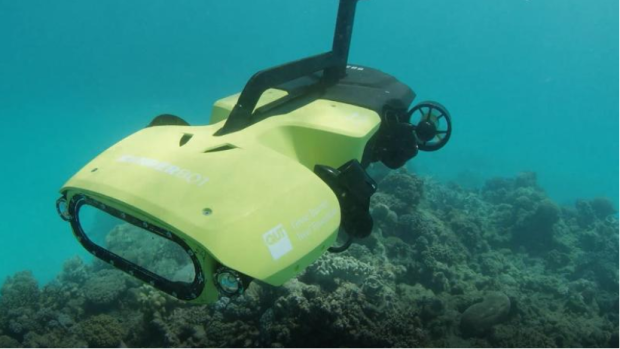 Australia unveils starfish-killing robot to protect Barrier Reef