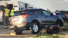 An SUV damaged in a crash on Highway 7