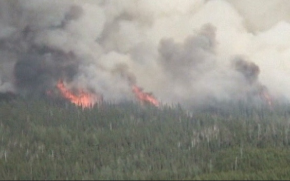 File image of a forest fire.