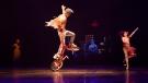 A performance of the Cirque du Soleil show 'Volta' is pictured. (Cirque du Soleil)