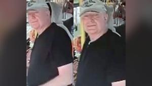 Toronto sexual assault suspect