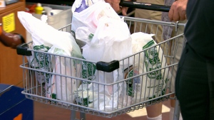 Sherbrooke's bylaw exempts the use of other plastic bags, such as the ones used to wrap dry cleaning, bags used for bulk items, paper bags and reusable bags.