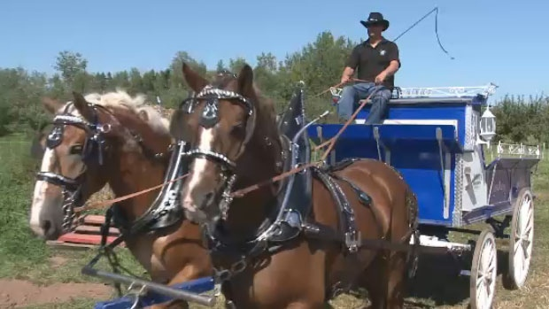 The 73rd edition of the Queens County Fair celebrates New Brunswick's history of agriculture and rural life.