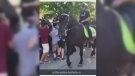 A video was taken of a woman who was run over by a horse at a homecoming party.