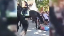 Woman run over by horse at homecoming party